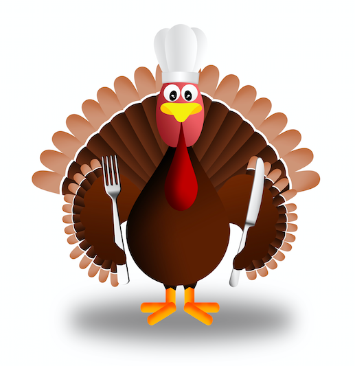 Thanksgiving & Job Search: Don't be a Turkey!